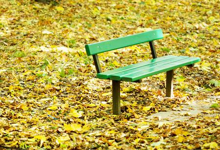 Autumn park bench photo