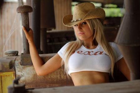country girls: Sexy cowgirl  Stock Photo