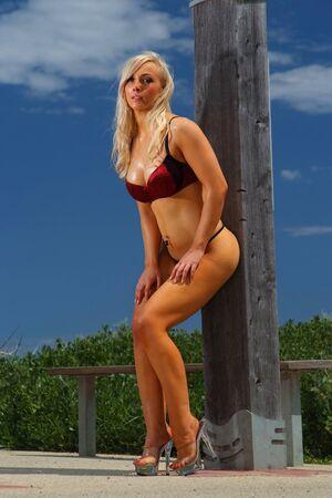 sheer lingerie: Sexy glamour girl  Stock Photo