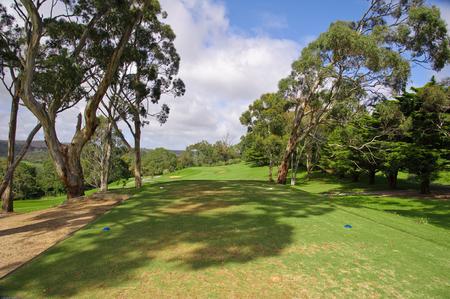 Golf course green Foto de archivo