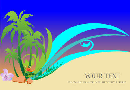 beach background with palms