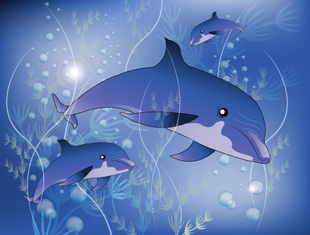 Dolphins with underwater plant Illustration