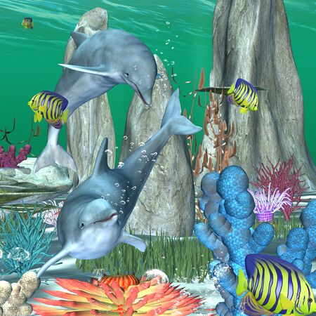dauphin: Jeu drôle de dauphin