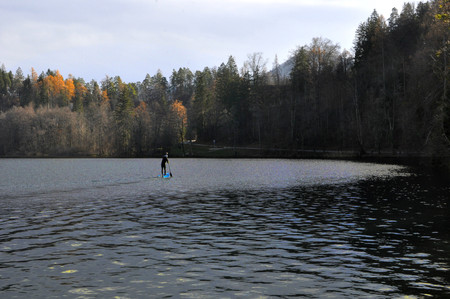 Sup, stand up paddle, on Bled Lake, Slovenia, Europe. Man rowing on the lake in autumn.