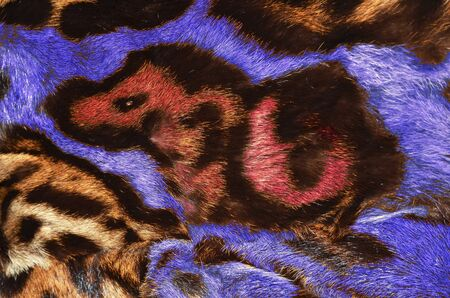 fur coat: colorful fur coat details Stock Photo