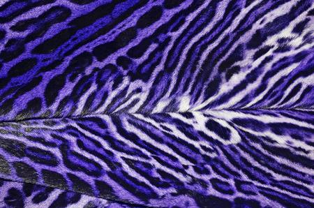 fur coat: colorful pattern of fur coat Stock Photo