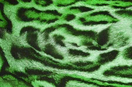 feline: feline fur texture Stock Photo