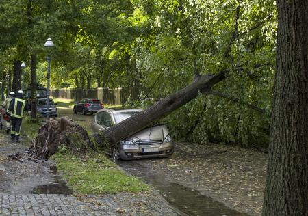 Tree fallen on a car after a storm 版權商用圖片 - 86040704