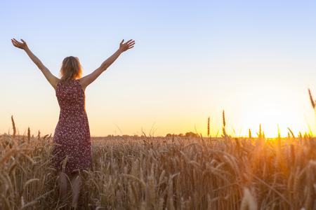 Happy positive woman full of vitality raising hands and facing the sun in a wheat field at sunrise Banque d'images