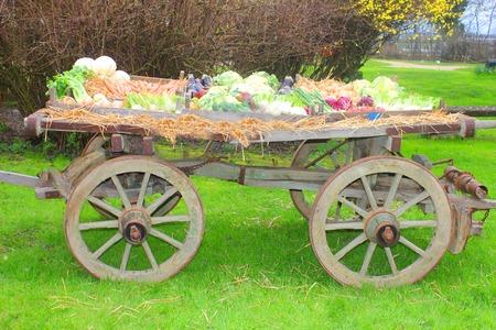 handcart: an handcart full of fresh vegetables