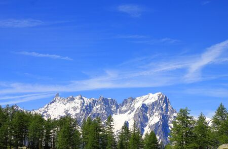 a panorama of Mont Blanc with forest Standard-Bild - 127530698