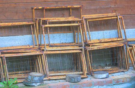 some honey frame for beehives