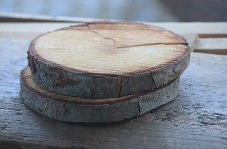 some pieces of trunk on the table