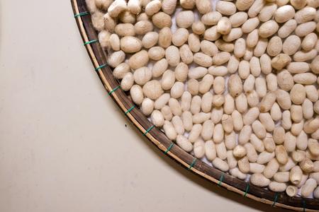 White little cocoons silkworm with copyspace in Vietnam Imagens