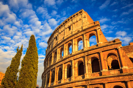 Colosseum and trees at sunset, Rome. Rome architecture and landmark. Rome Colosseum is one of the best known monuments of Rome and Italy