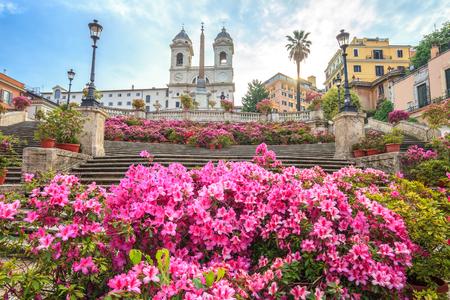 Spanish steps with azaleas at sunrise, Rome, Italy, Europe
