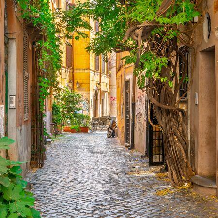 Strada accogliente con piante in Trastevere, Roma, Europa. Trastevere è un romantico quartiere di Roma, lungo il Tevere a Roma. Attrazione turistica di Roma.
