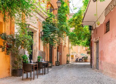 Cozy street with plants in Trastevere, Rome, Europe. Trastevere is a romantic district of Rome, along the Tiber in Rome. Turistic attraction of Rome.
