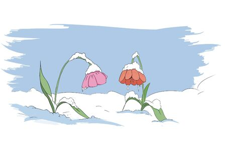 winter frozen flower  scene Stock Vector - 17923722
