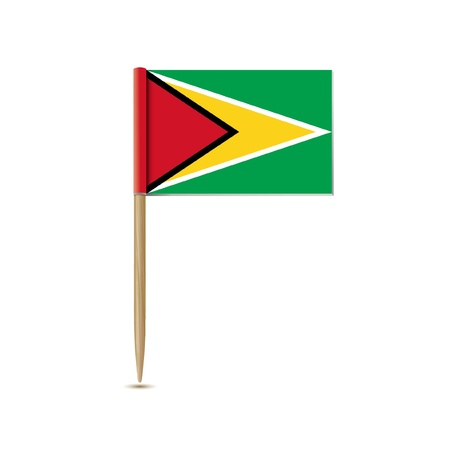 guyana: guyana flag Illustration