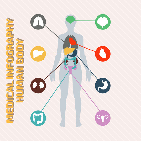 bowel: Medical infographic human body