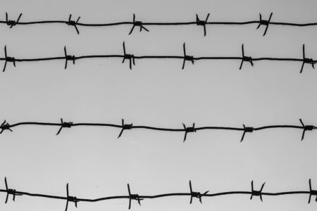 correctional facility: barbed wire Stock Photo