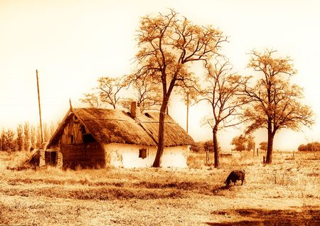 disrupt: an old house sepia with goat and threes
