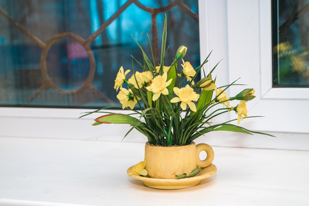 The photo of a house plant with flowers in a pot, standing on a window sill Фото со стока