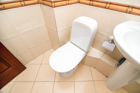 The photo of the bright public toilet room with standing in it a white toilet bowl