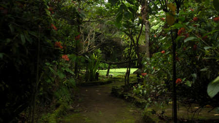 Photo of an old wooden bridge across a mountain river in the jungle Imagens