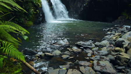 Picture of waterfall with rocks among tropical jungle with green plants trees and river.