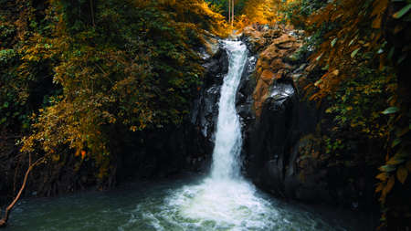 Picture of waterfall with rocks among tropical jungle with green plants and trees and water falling down into river