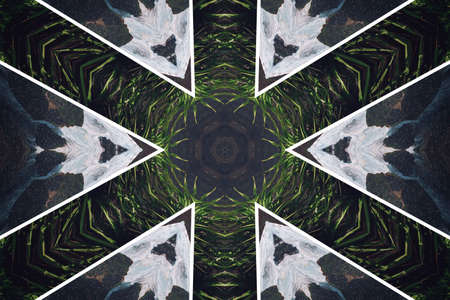 Abstract background from a repeating kaleidoscope view with gray and green dark and bright lines and shapes coming from the center Banco de Imagens