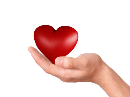 red heart in hand. love concept on white background photo