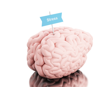 3D Illustration. Brain with a signboard and word stress. Isolated white background.