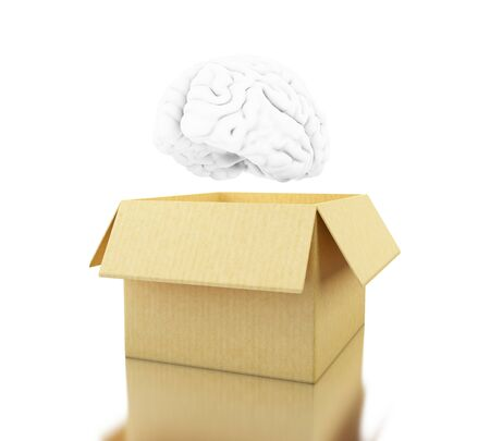 3d illustration. Brain with cardboard box. Think outside the box. Open mind concept. Isolated white background Stock Photo