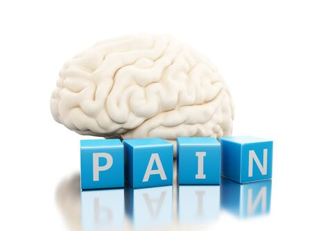 3d illustration. Human brain with pain word in cubes. Science anatomy concept. Isolated white background Stock Photo