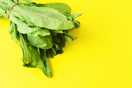 Fresh arugula leaves on yellow background. Organic concept.