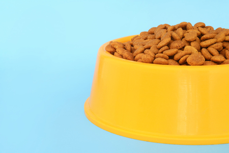 Yellow plastic bowl full with dog food on light blue background. Pet feeding and care concept
