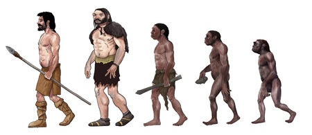 Human evolution digital  illustration, homo erectus, australopithecus