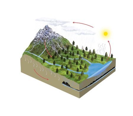 Digital illustration of water cycle illustration