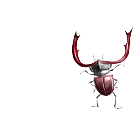toon: Toon digital illustration of a Stag beetle isolated