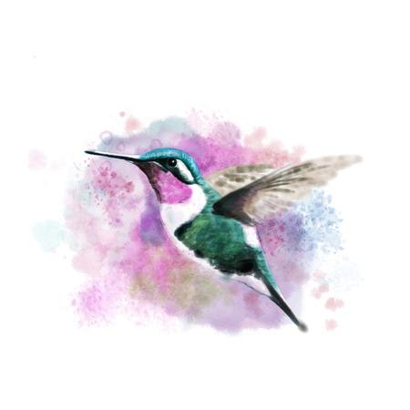 Digital watercolor of a flying hummingbird