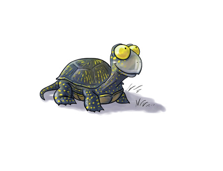 toon: Digital toon  illustration of a  terrapin isolated