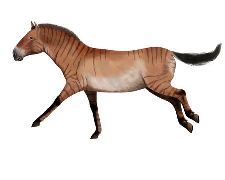 Hipparion, ancient horse digital illustration