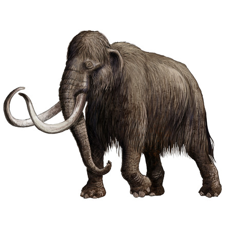 Digital illustration of a extincted Mammoth