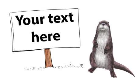 nutria caricatura: Ilustración toon digital de una nutria aislado