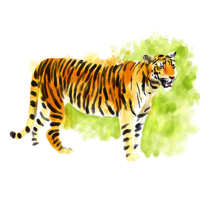 Digital watercolor illustration of a tiger