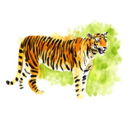 Digitale waterverf illustratie van een tijger Stockfoto