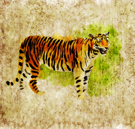Digital watercolor illustration of a tiger